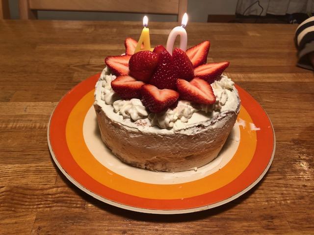 手作りケーキの歴史14