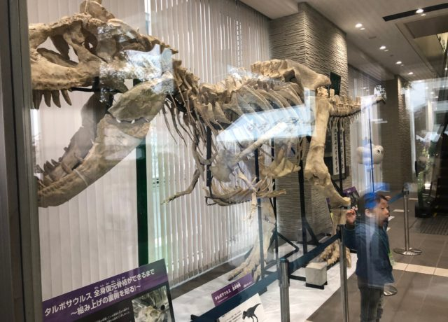 岡山理科大学の科学博物園に行ってきました